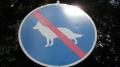 Deutscher Schäferhunde nicht erlaubt !