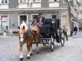 Pferdefuhrwerk in der Neustadt.